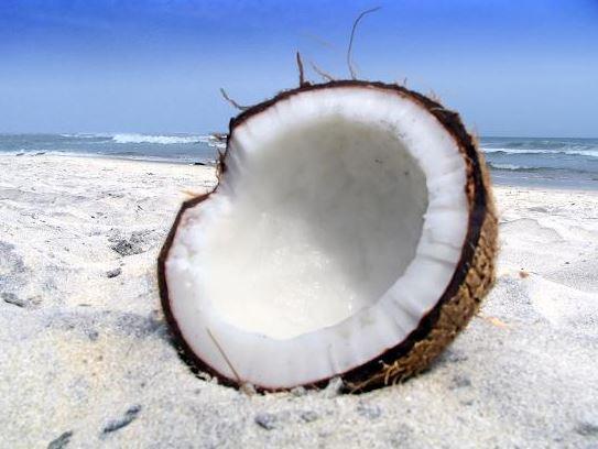 graemejordanweightlossprogram,coconutoilforweightloss,hcgdiet,hcgdietskincare